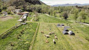 planeses_agricultura_regenerativa-1